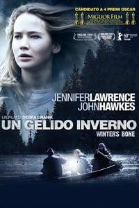 copertina film Un+gelido+inverno 2010