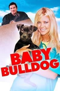 Baby Bulldog (2020)