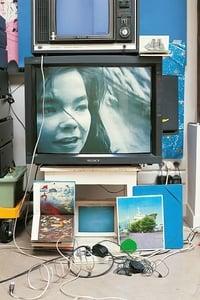 Björk: Vessel 1994