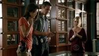 Hawaii Five-0 S01E13