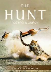 copertina serie tv La+caccia 2015