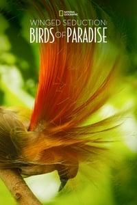 Winged Seduction: Birds of Paradise (2012)