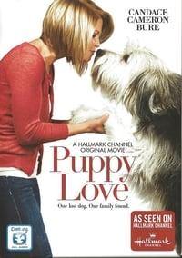 copertina film Un+cucciolo+per+due 2012