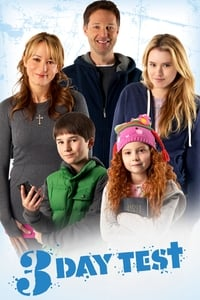 L'expérience de Noël (2012)