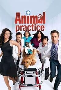 copertina serie tv Animal+Practice 2012