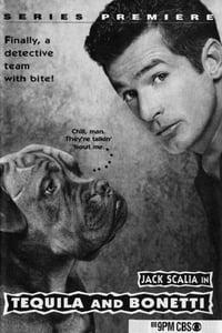 copertina serie tv Tequila+e+Bonetti 1992