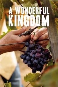 A Wonderful Kingdom