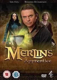 copertina serie tv Merlino+e+l%27apprendista+stregone 2006
