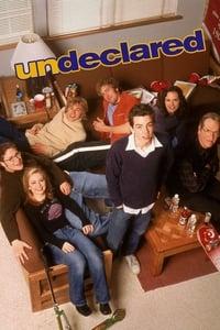 copertina serie tv Undeclared 2001