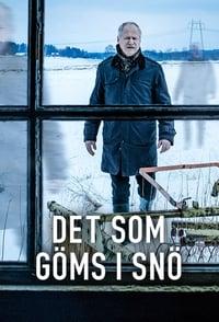 Det som göms i snö (2018)