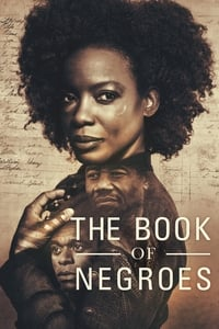 copertina serie tv The+Book+of+Negroes 2015