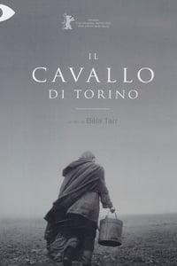copertina film Il+cavallo+di+Torino 2011