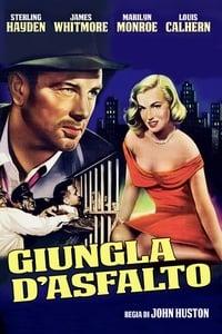 copertina film Giungla+d%27asfalto 1950