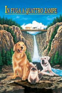 copertina film In+fuga+a+quattro+zampe 1993