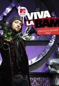 Viva La Bam S04E06