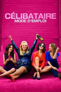 Célibataire, mode d'emploi (2016)