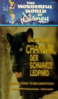 Chandar, the Black Leopard of Ceylon