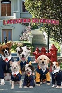 copertina serie tv L%27accademia+dei+cuccioli 2019