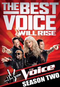 The Voice 2×1