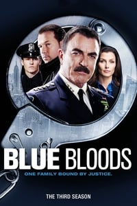 Blue Bloods S03E20