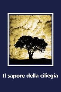 copertina film Il+sapore+della+ciliegia 1997