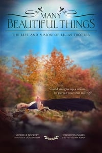 Many Beautiful Things (2015)