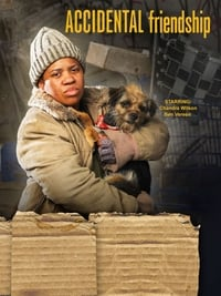 copertina film Amiche+per+caso 2008