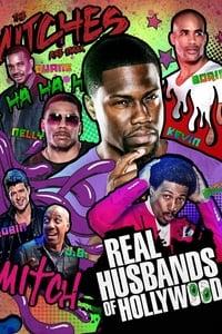 copertina serie tv Real+Husbands+of+Hollywood 2013