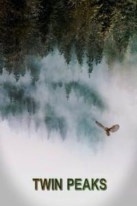 copertina serie tv I+segreti+di+Twin+Peaks 1990
