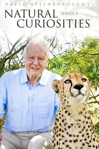 David Attenborough's Natural Curiosities S03E02