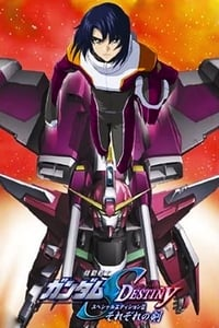 Mobile Suit Gundam SEED Destiny: Special Edition II - Their Respective Swords (2006)