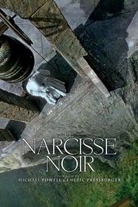 Le Narcisse noir (1949)