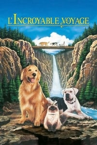 L'Incroyable Voyage (1993)