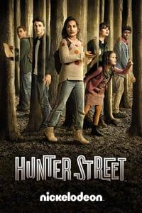 Les Mystères d'Hunter Street (2017)