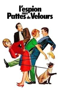 L'espion aux pattes de velours (1966)