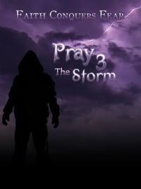 Pray 3D: The Storm (2012)