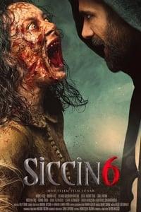 Siccin 6 (2019)