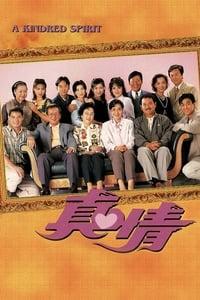 真情 (1995)