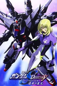 Mobile Suit Gundam SEED Destiny: Special Edition III - Flames of Destiny (2006)