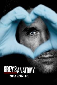 Grey's Anatomy (2013) Season 10