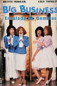 Sopa de gemelas (1988)