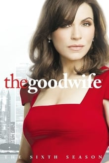 Geroji žmona 5 Sezonas / The Good Wife Season 5 (2018)