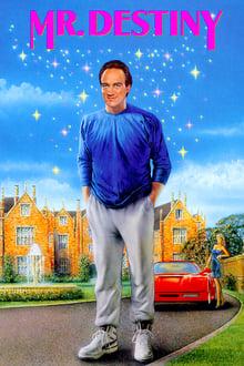 Un destino de ida y vuelta (1990)