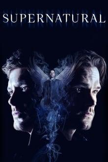 Supernatural 14ª Temporada poster, capa, cartaz