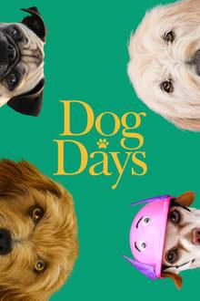 Šuns dienos online