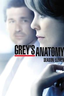 Grey's Anatomy (2014) Season 11