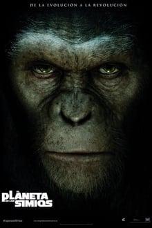El planeta de los simios: confrontación (2011)