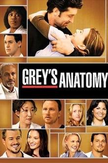 Grey's Anatomy (2009) Season 5