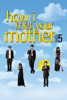 How I Met Your Mother 5×8