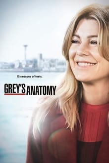 Grey's Anatomy 15ª Temporada (2018) Torrent HDTV 720p e 1080p Legendado e Dual Áudio Download